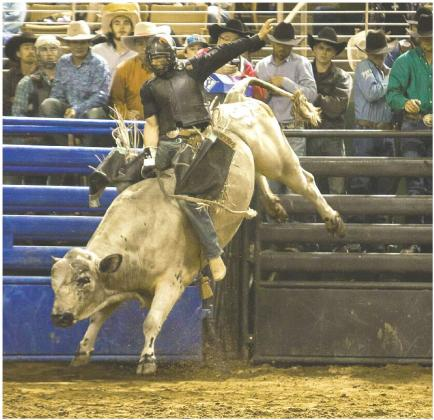Rodeo fans will be entertained watching seven of the traditional events, including bull riding and women's barrel racing. PHOTOS COURTESY OF SILVER SPURS RODEO